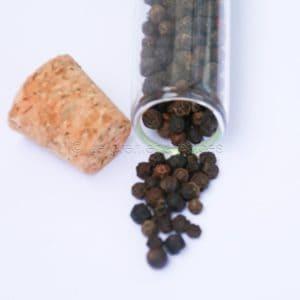 Poivre sauvage en tube de 25 grammes