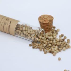 Poivre blanc en grains en tube de 30 grs